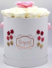 Beyond-Flowerbox-04
